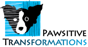 Pawsitive Transformations